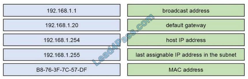 cisco 200-301 exam question q12-1
